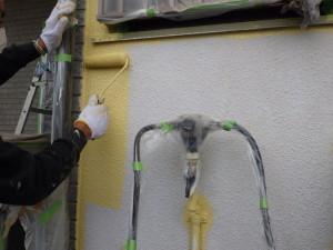 壁中塗り (5)
