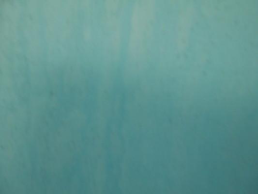 神奈川県茅ケ崎市の某老人介護施設|リハビリ用プールの補修塗装工事(塗料:プールコート)
