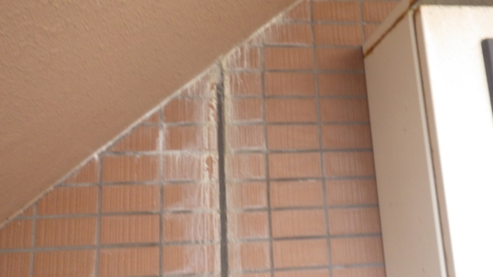 外壁モルタルの白華部(エフロ)の補修工事|神奈川県茅ケ崎市の某ホテルの外装リフォーム