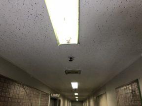 天井の塗装工事(防カビ)|神奈川県横須賀市の某病院にて塗り替えリフォーム
